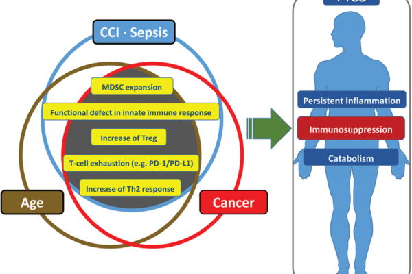 Figure showing Similarities and redundancies in the pathophysiology of patients with sepsis, cancer, and advanced age.
