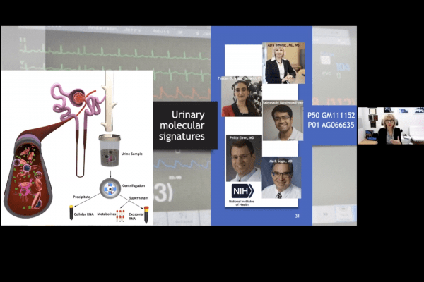 screenshot of lecture that says urinary molecular signatures and has a diagram of a kidney
